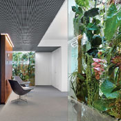 Thumbs 61238 Plants Office Tower Ippolito Fleitz 0615.jpg